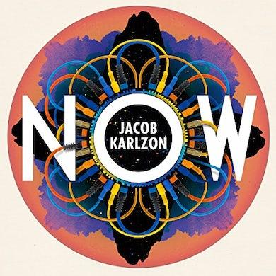NOW Vinyl Record