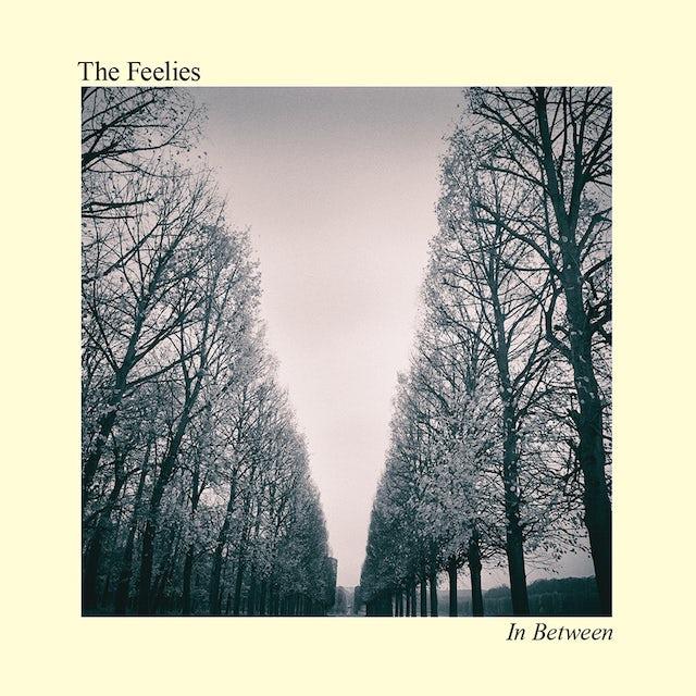 The Feelies IN BETWEEN CD