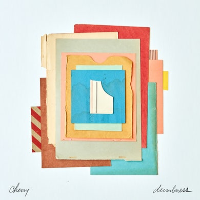 DUMBNESS Vinyl Record
