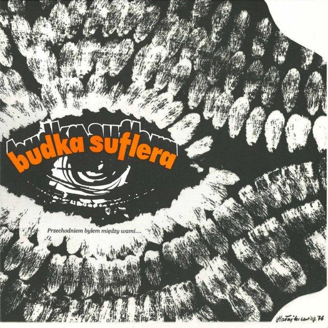 Budka Suflera PRZECHODNIEM BYLEM MIEDZY WAMI Vinyl Record