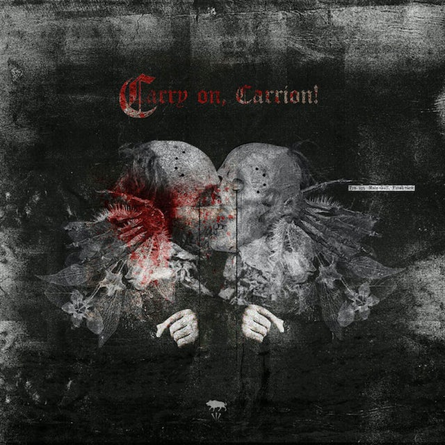 Ayat CARRY ON CARRION CD