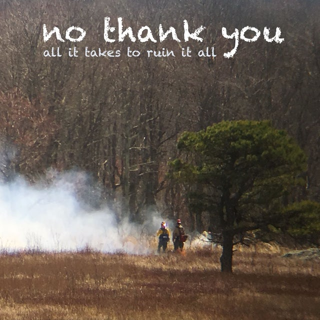 No Thank You ALL IT TAKES TO RUIN IT ALL CD