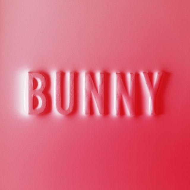 Matthew Dear BUNNY CD