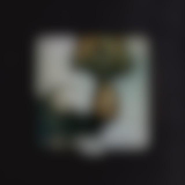 Ariana Grande THANK U NEXT CD