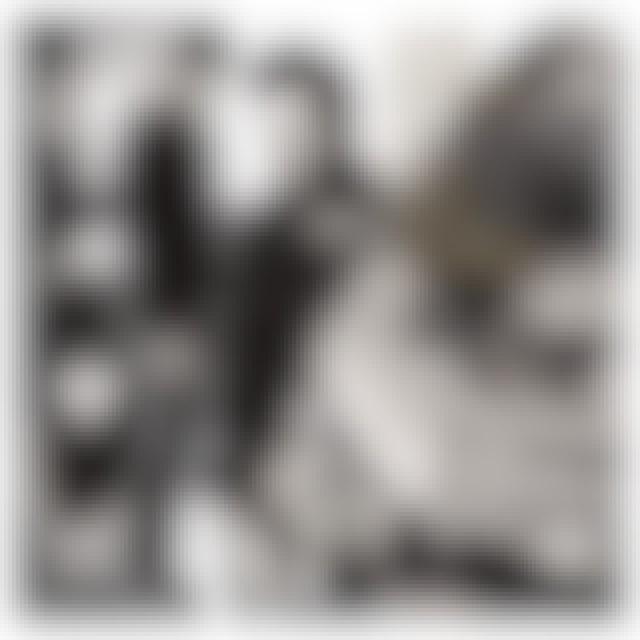 Alain Bashung LES 50 PLUS BELLES CHANSONS CD