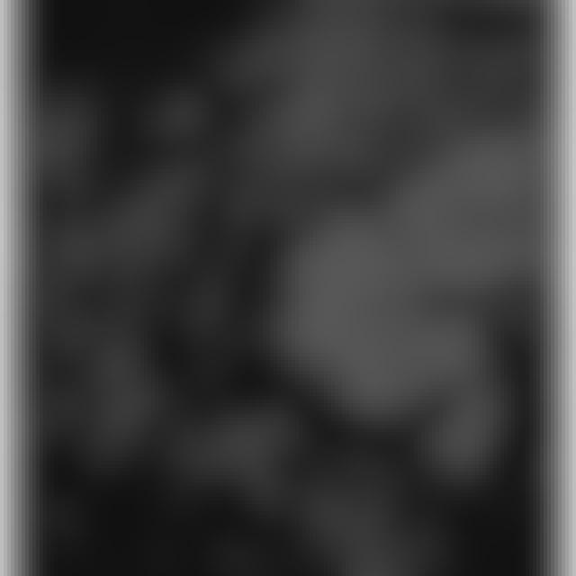 Abigor HOLLENZWANG: CHRONICLES OF PERDITION CD