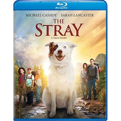 STRAY Blu-ray