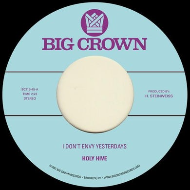 Holy Hive I DON'T ENVY YESTERDAYS / COLOR IT EASY Vinyl Record