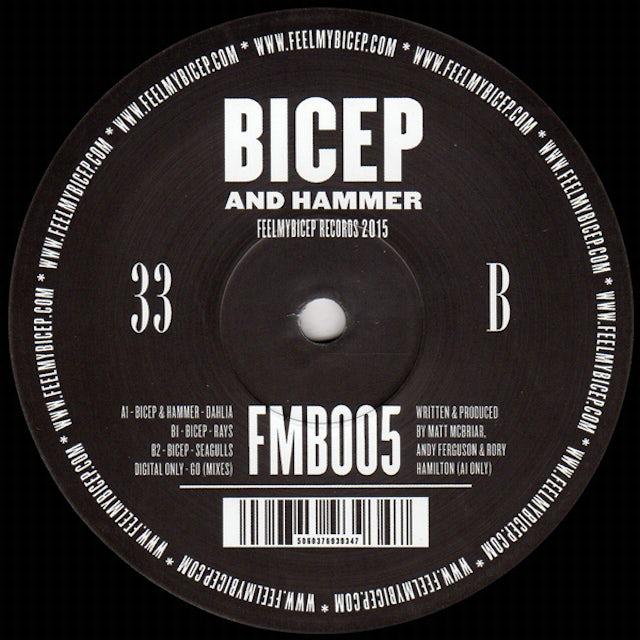 Bicep & Hammer