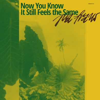 NOW YOU KNOW IT STILL FEELS THE SAME (YELLOW) Vinyl Record