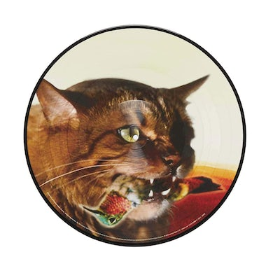 """Guster 'The Meowstro Sings: Keep It Together' 12"""" Vinyl Picture Disc"""