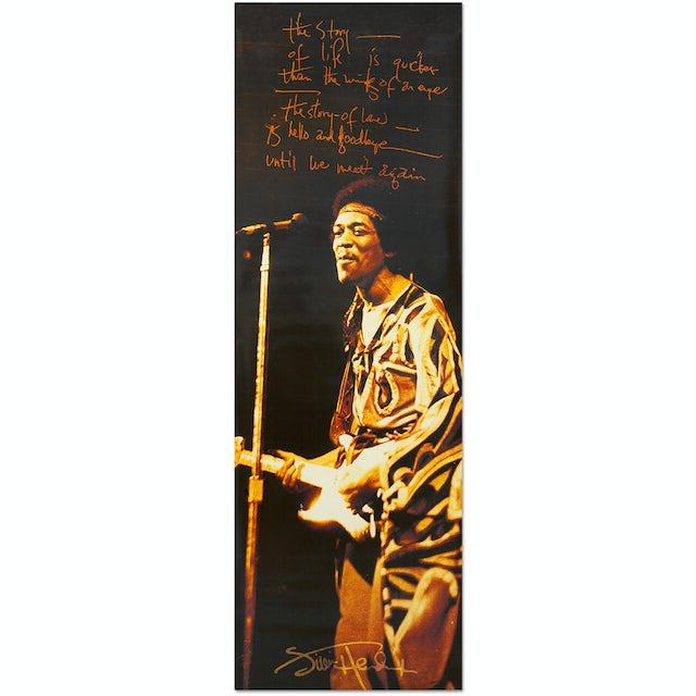 Jimi Hendrix The Story Of Life Door Poster