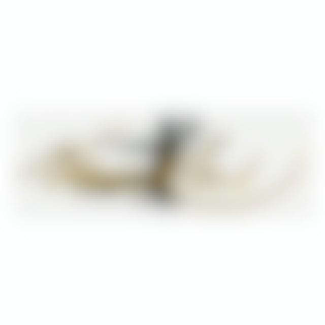 Bruce Lee Signature Flying Man Large Sticker
