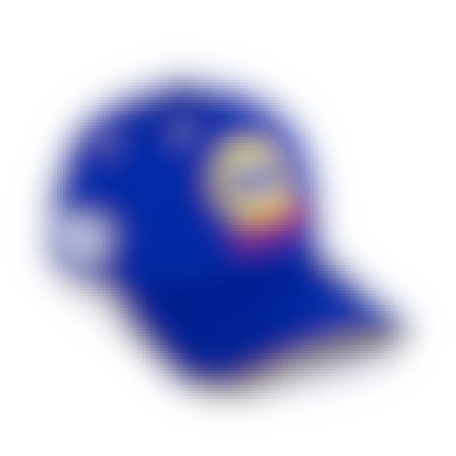Hendrick Motorsports Chase Elliott 2019 NASCAR #9 NAPA New Era 39Thirty Driver Hat