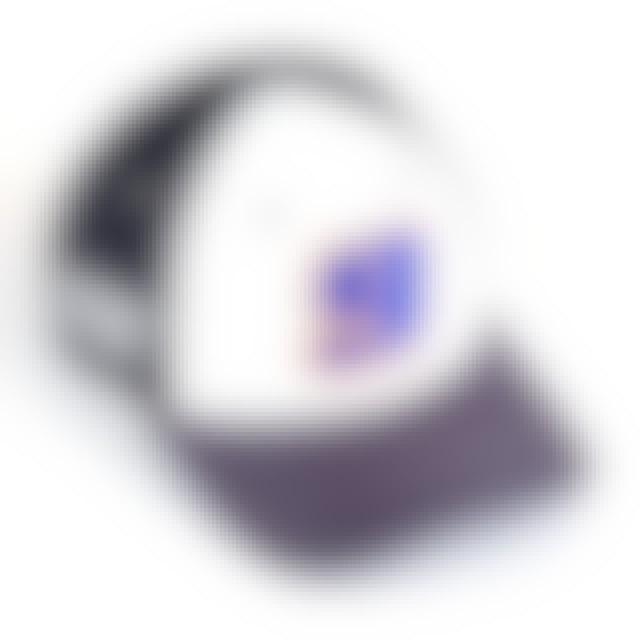 Hendrick Motorsports Chase Elliott 2019 NASCAR #9 NAPA New Era 9Forty Alternative Driver Hat