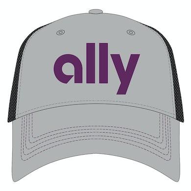 #48 NASCAR Jimmie Johnson Ally Hat