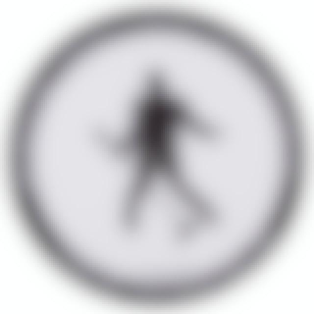 Elvis Presley Silhouette Slip Mat
