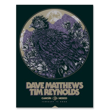 Dave Matthews Band Dave & Tim Show Poster - Cancun Mexico 2/15/2020