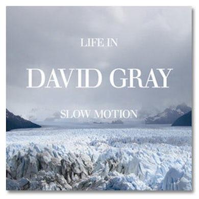 David Gray - Life In Slow Motion CD