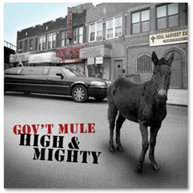 Govt Mule - High and Mighty
