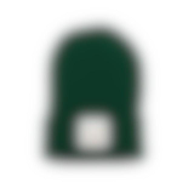 Maren Morris Crown Logo Beanie