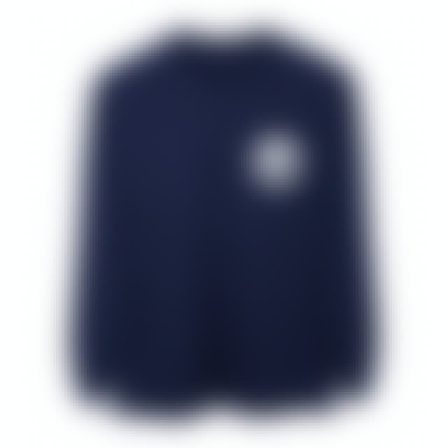 Pink Floyd The Dark Side of the Moon Tour Back Logo Longsleeve T-Shirt