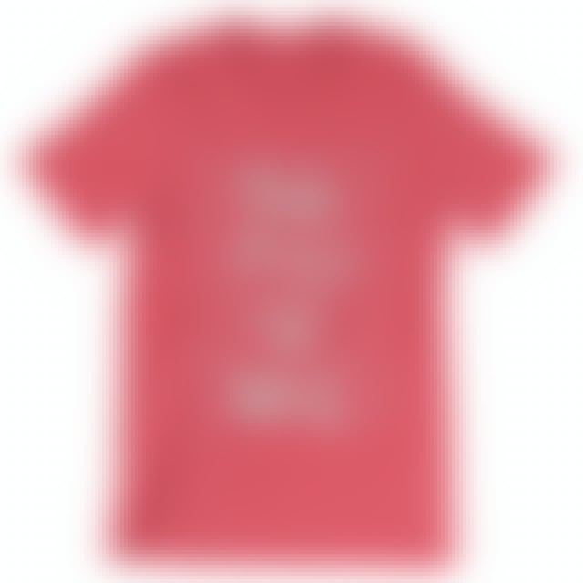 Pink Floyd Women's Red Wall T-Shirt