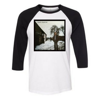 David Gilmour Album Art Raglan