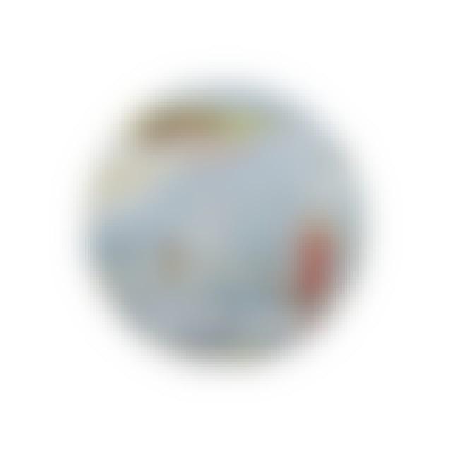 Genesis Foxtrot Button