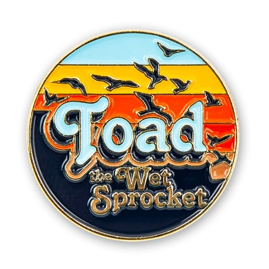 Toad The Wet Sprocket Sunset Pin