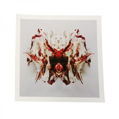 Band Of Skulls  Sweet Sour 18 x 18 Inch Print
