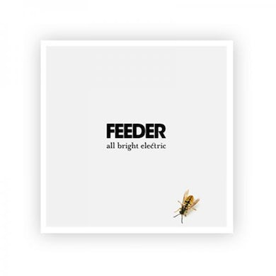 Feeder Exclusive 12 x 12 All Bright Electric Litho Art Print