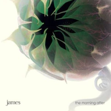 James The Morning After CD