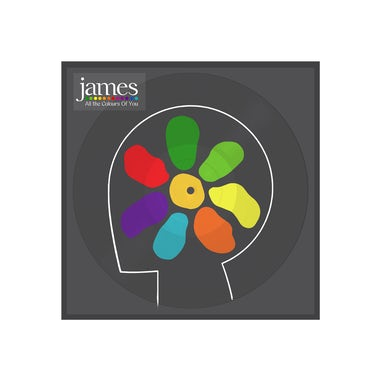 James All The Colours Of You Picture Disc Double Heavyweight LP (Vinyl)