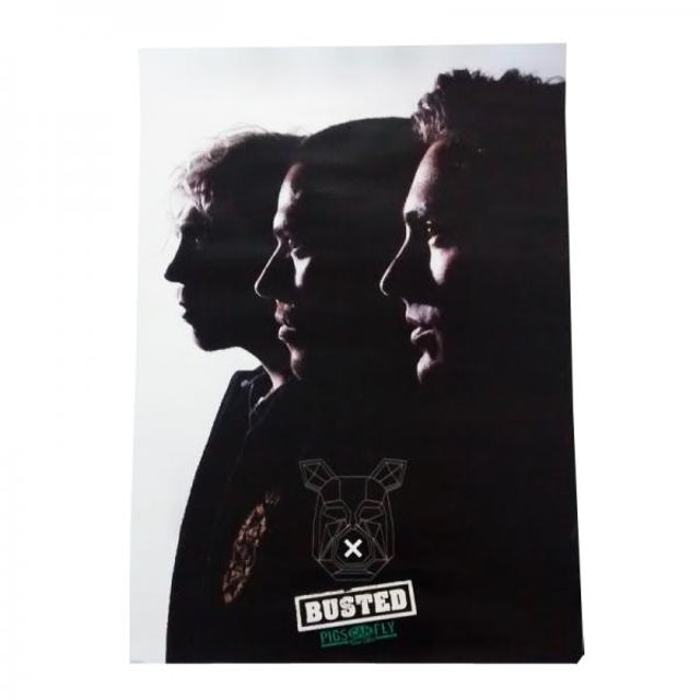 Busted A1 Poster