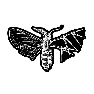 Holding Absence Moth Patch