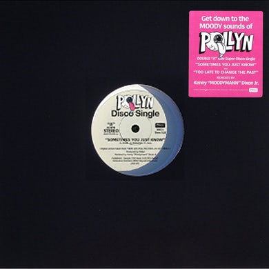 Pollyn The Moodymann Remixes Black 12 Inch