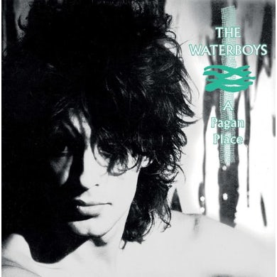 The Waterboys A Pagan Place LP (Vinyl)