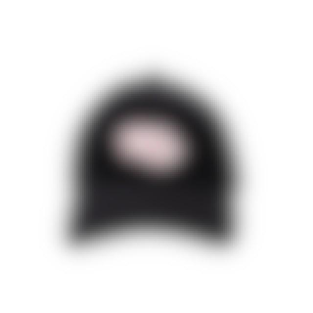 Shawn Mendes Festival Tour Dad Hat