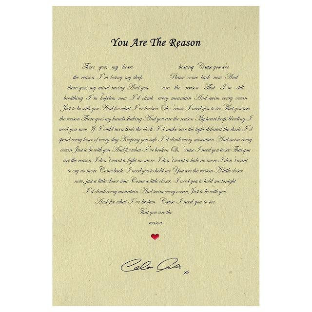 Calum Scott You Are The Reason Lyric Poster