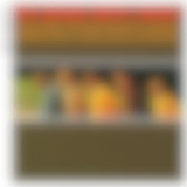 The Beach Boys Today! - Vinyl LP