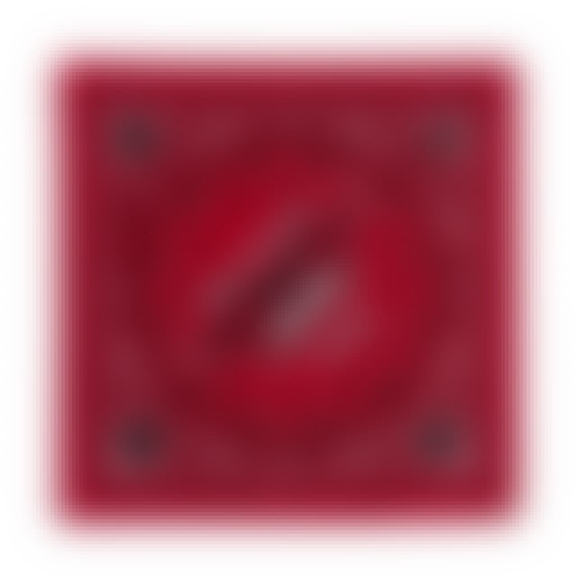 Aerosmith RED BANDANA