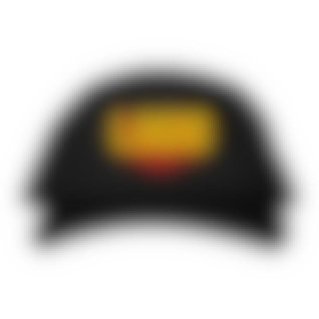 Logic Zoom Dad hat