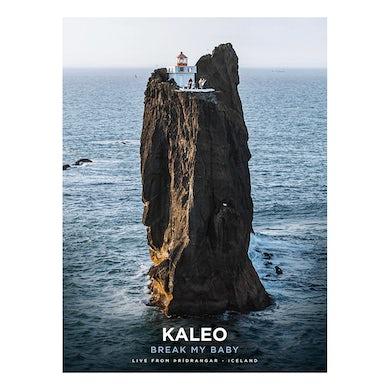 Kaleo Break My Baby Poster
