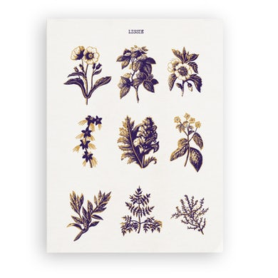 Lissie FLORAL POSTER