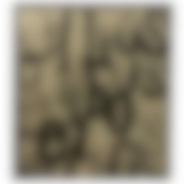 Graham Wilkinson - Ethos CD