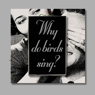 Violent Femmes Why Do Birds Sing? Enamel Pin