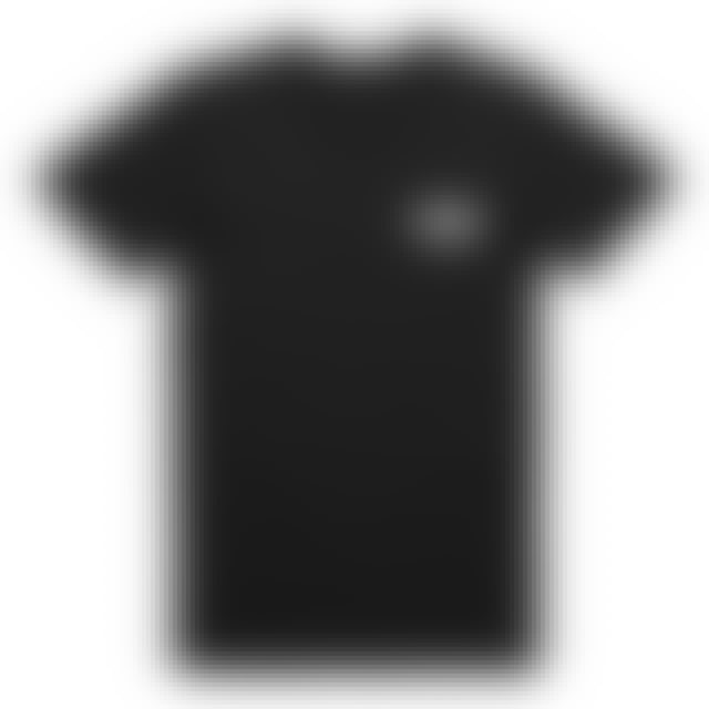 The Amity Affliction Ivy Live Tee (Black)