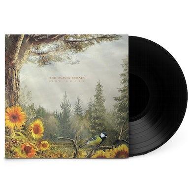 "Acacia Strain Slow Decay 12"" Vinyl"