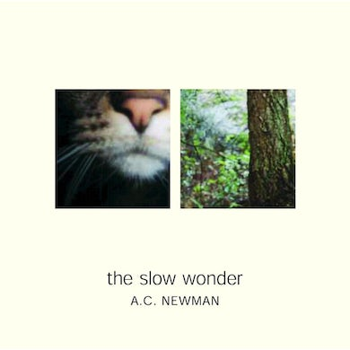 A.C. Newman The Slow Wonder CD